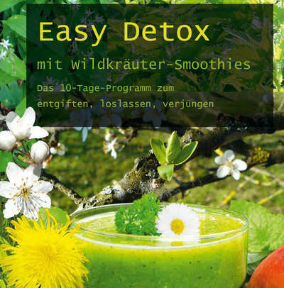 Easy Detox mit Wildkräuter Smoothies