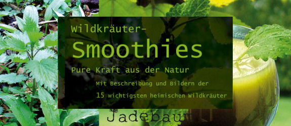 Wildkräuter Smoothies